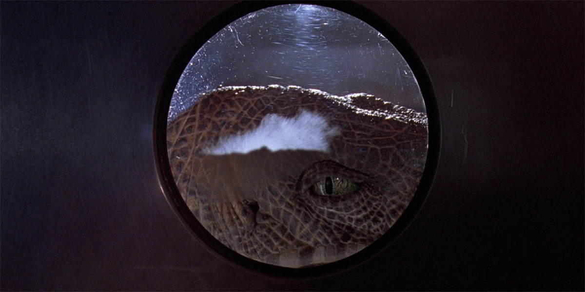 Jurassic Park Raptor in kitchen window