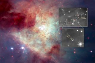 Orion nebula stars BN and I