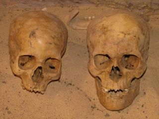 Egyptian skulls from necropolis