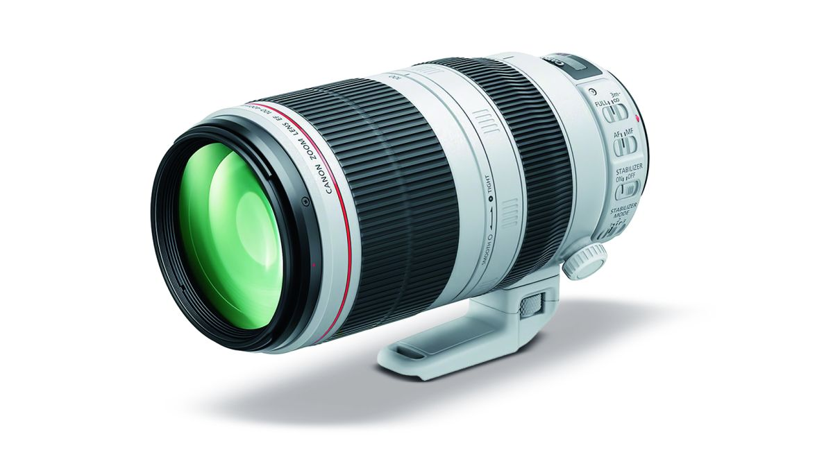 The best Canon telephoto lenses in 2019 | Digital Camera World