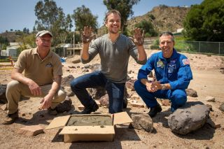 Matt Damon's Hand Prints