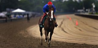 California Chrome, Triple Crown, thoroughbred horse racing, Belmont Stakes