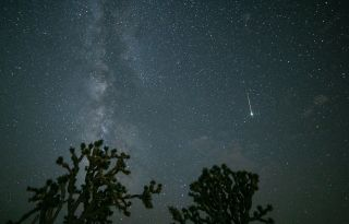 """A """"shooting star"""" lights up the night sky during the 2021 Perseid meteor shower."""