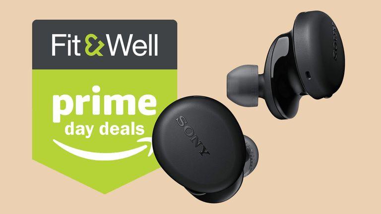 Sony WF-XB700 EXTRA BASS earbuds