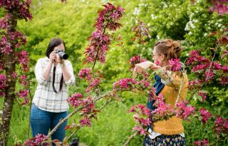 14 tips for flower photography at home