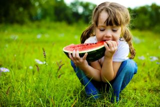 A little girl sits eating watermelon