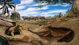 proto-turtle digging underground