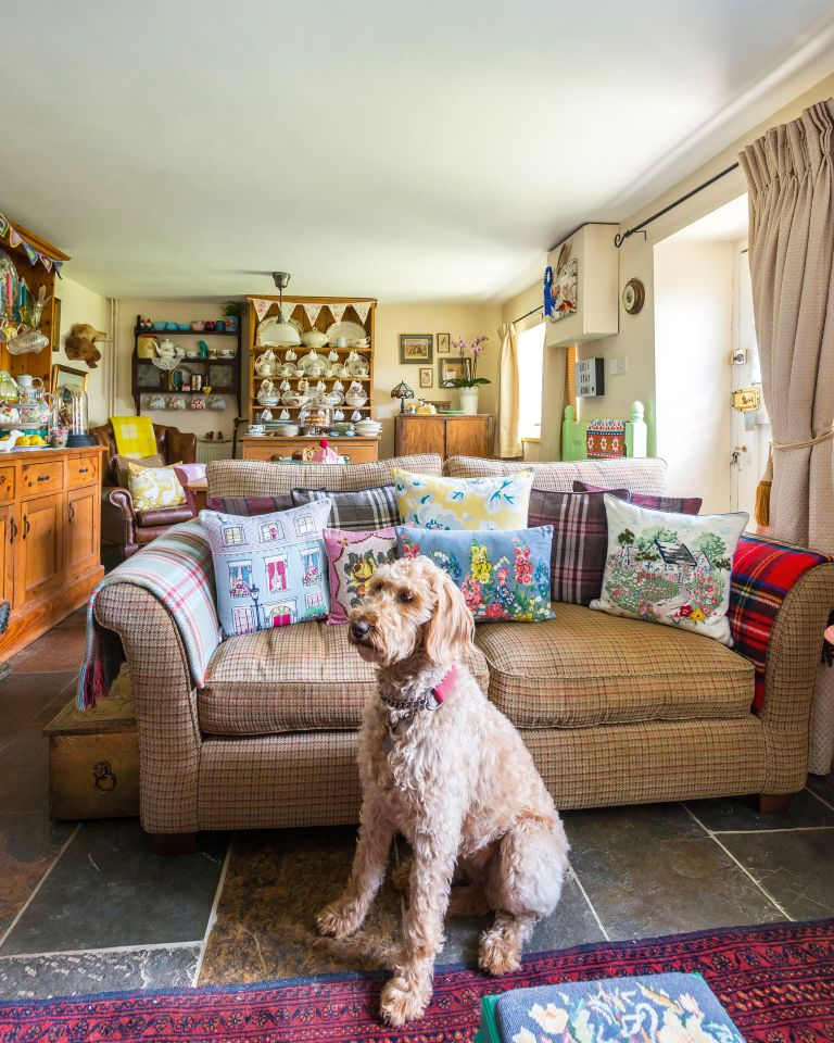 house prices can be affected by presence of pets: Flint cottage sitting room with dog