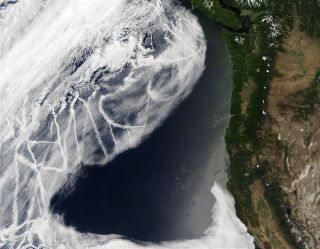 Ship tracks off the western U.S.