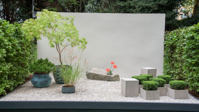 minimalist container garden