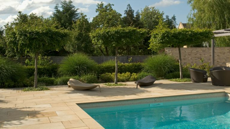 An example of pool landscaping ideas showing a landscaped garden with trees and sun loungers by a pool