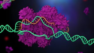 illustration of crispr-cas9 snipping a bit of DNA from a strand