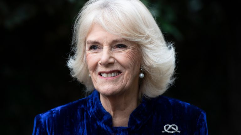 Duchess Camilla looks stunning in new portrait