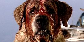 Cujo And 5 Other Stephen King Movies That Need Remakes