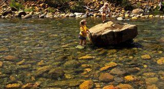 Rough & Ready Creek