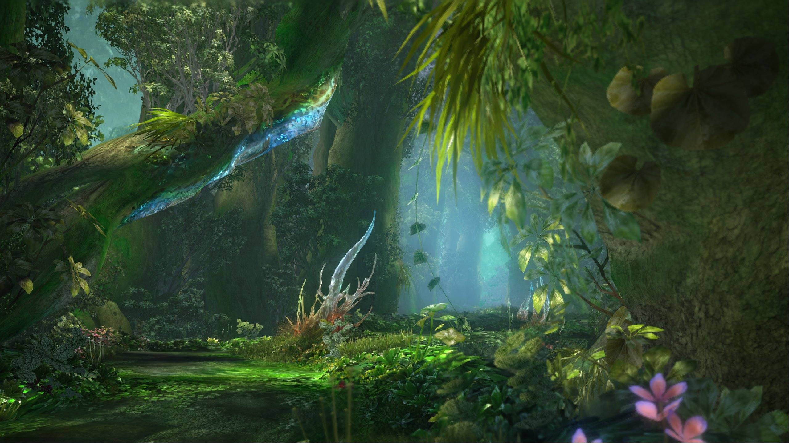 A sunlit green forest