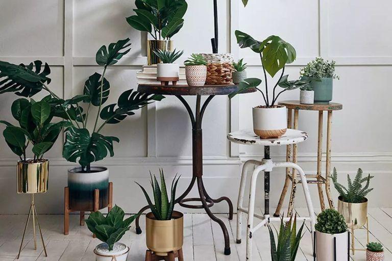 Primark faux plants