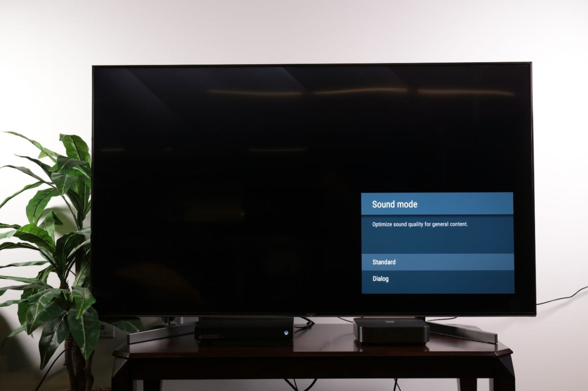How to adjust sound settings on your Sony TV - Sony Bravia