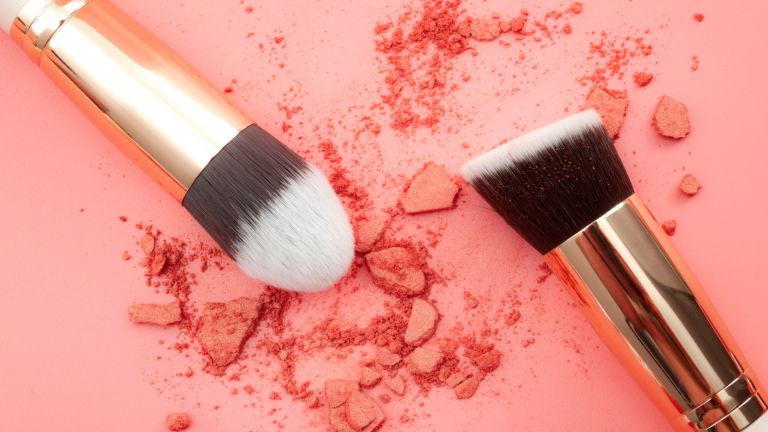 Blush brushes and pink blush