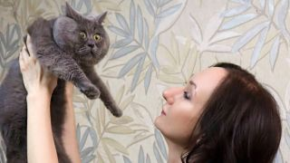 Fedya the startled looking cat being held up by his owner