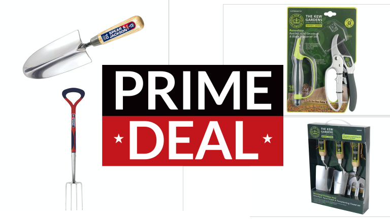 Spear & Jackson Prime Day deals