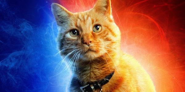 Goose the Cat / Flerken in Captain Marvel
