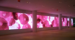 IAC Unveils High-Resolution Video Wall