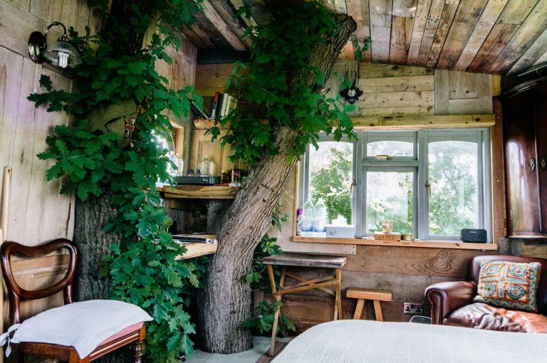 Elham treehouse at Airbnb