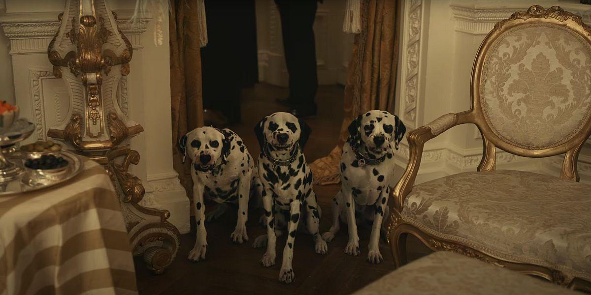 Dalmatians in Cruella