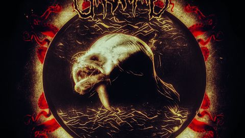 Cover art for Ursinne - Swim With The Leviathan album