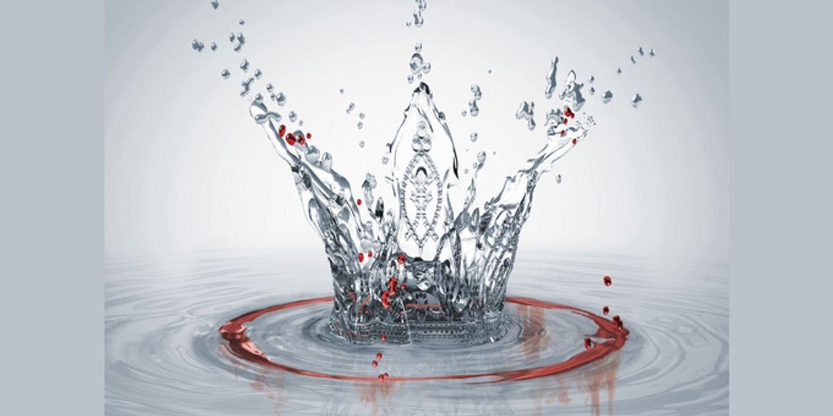 Red Queen Cruel Crown Book Cover