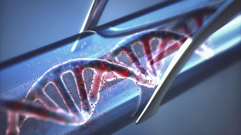Bio Synergy DNA and Epigenetics Test