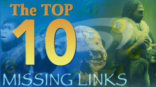 Top 10 Missing Links