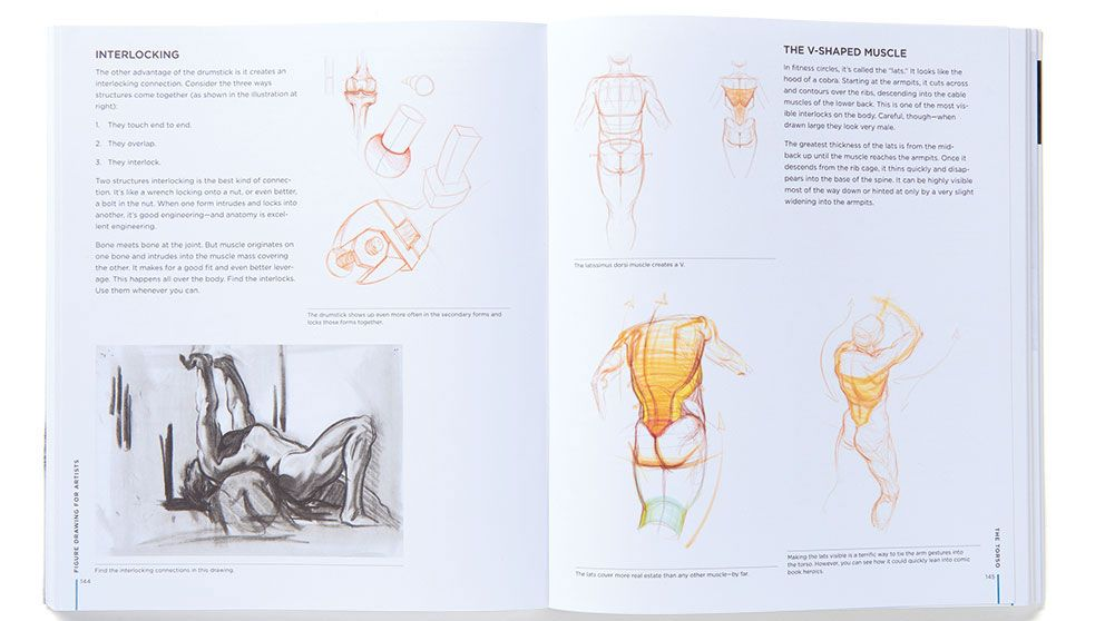 The best figure drawing books | Creative Bloq