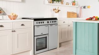 Best Double-Oven Ranges of 2019 - Gas and Electric Stove ...