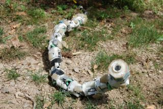 Howie Choset has developed a snake robot that moves without the aid of a fixed base. It can coordinate internal degrees movement to do a variety of locomotion capabilities.