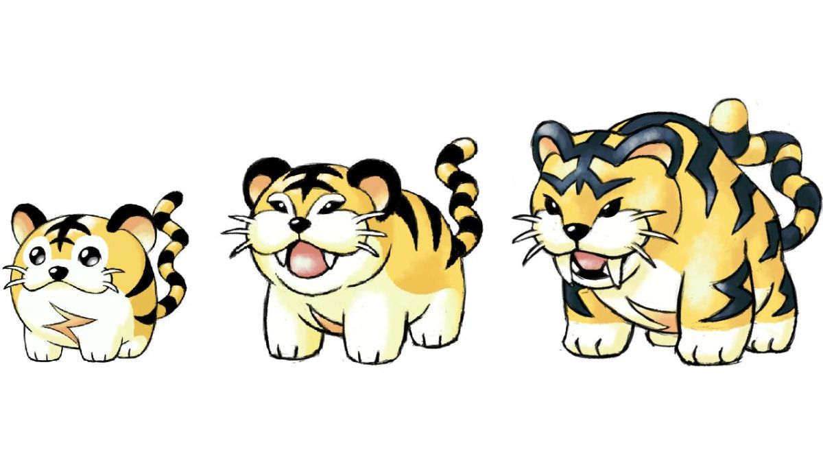 Kotora is the cutest Pokemon that never was