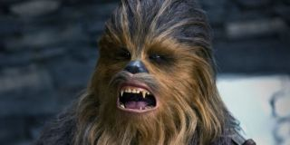 Chewbacca growling in Star Wars