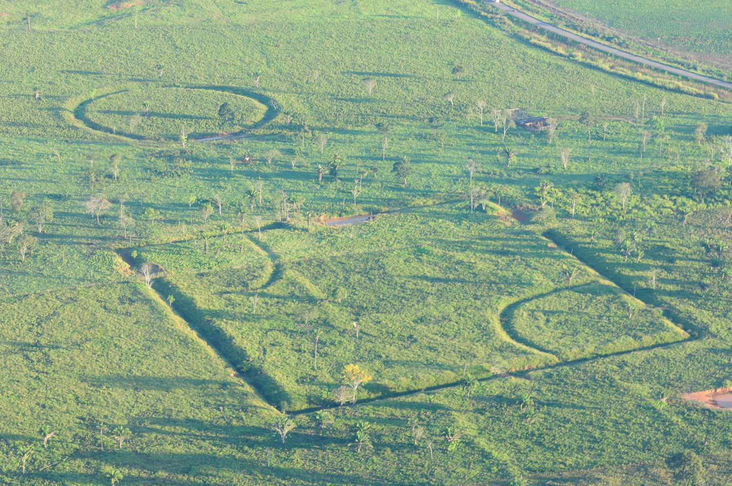 In Photos: Mysterious Amazonian Geoglyphs | Live Science