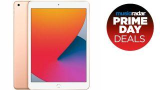 2020 iPad (8th gen)