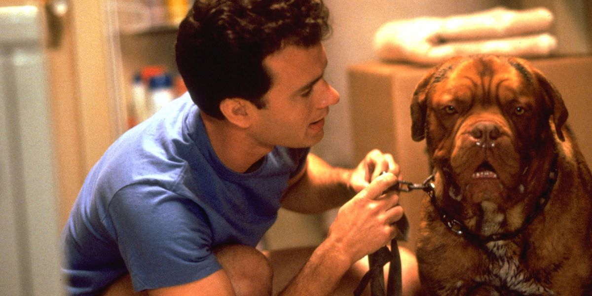Tom Hanks in 1989's Turner and Hooch
