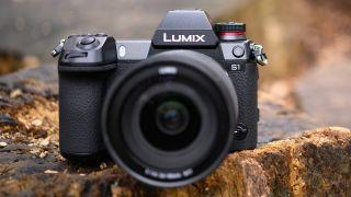 Best full-frame camera 2019: 10 advanced DSLRs and mirrorless cameras 26