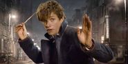 New Vicious Video Points Out Everything Wrong With Fantastic Beasts And Where To Find Them