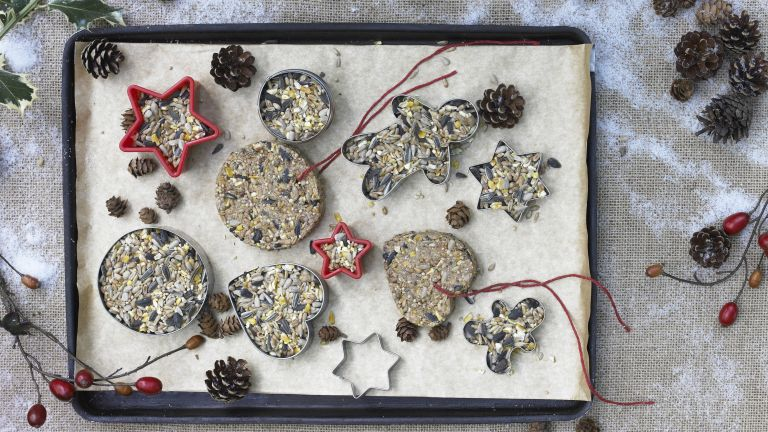 how to make bird feeders