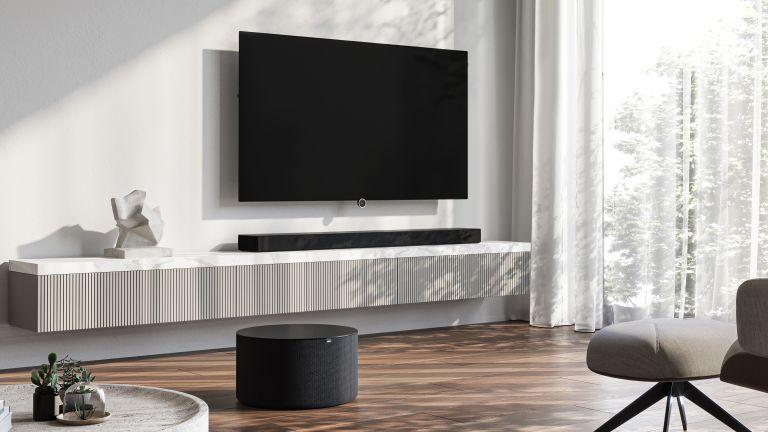 Loewe bild i TV in living room
