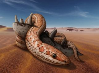 Life restoration of Najash rionegrina through the dunes of the landscape of the Kokorkom desert that extended across Río Negro (Northern Patagonia), Argentina during the Late Cretaceous (100 million years ago).