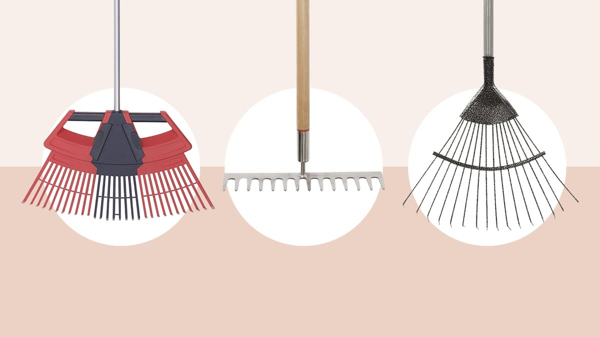 Best garden rake 2021: tidy your garden with one of these handy helpers
