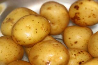 potato-in-water-110105-02