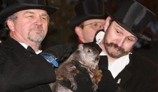 Punxsutawney Phil, Groundhog's Day