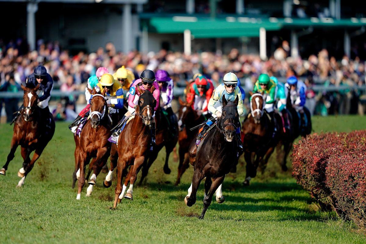Streaming Horse Racing